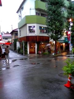 好奇心の森「ダーウィンルーム」 【下北沢】