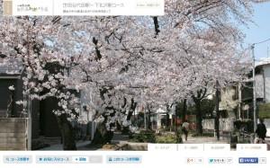 setagaya_daita-shimokitazawa_walking