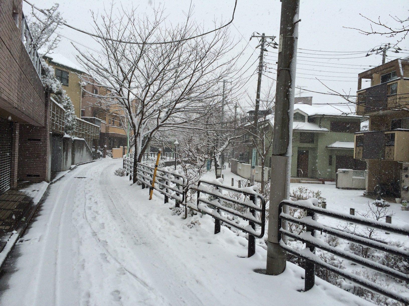 大雪の日 2014.2.8