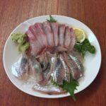 笹塚の魚屋さん「石川商店」の刺し身