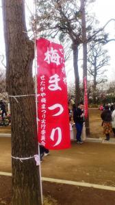 2013_ume_matsuri_0242.jpg